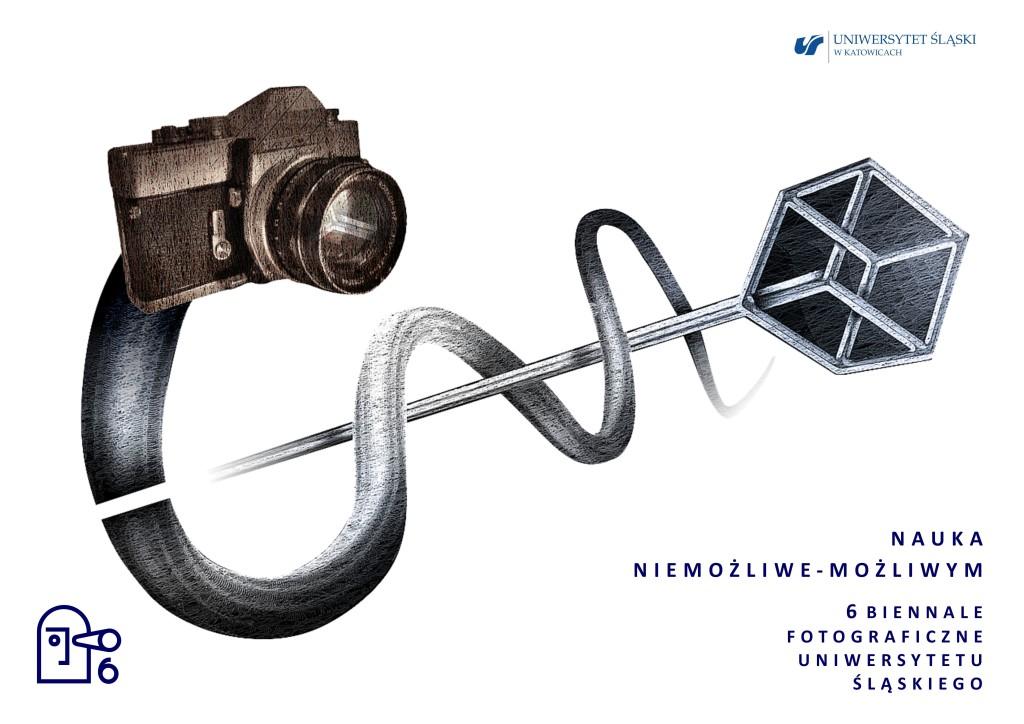 Plakat 6.Biennale
